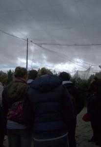 Die Teilnehmer stehen in einer riesigen Voliere