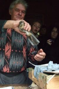 Ein Ornitologe hält einen Vogel in seinen Händen